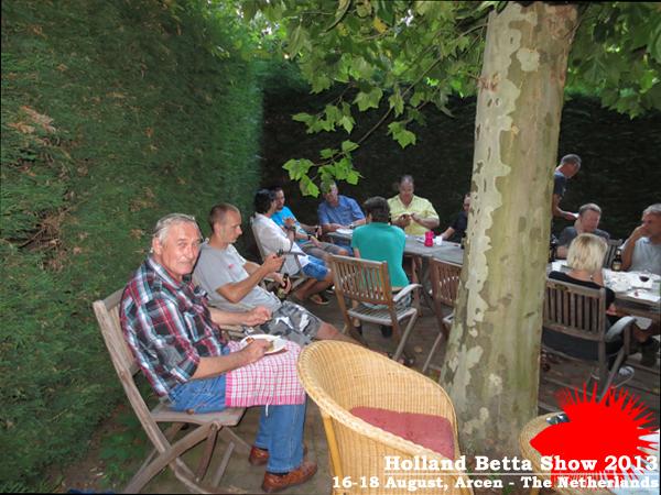 Bettas4all presents the Holland Betta Show 16-18 August 2013 HBS2013-11