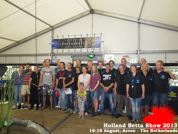 Bettas4all presents the Holland Betta Show 16-18 August 2013 HBS2013-29