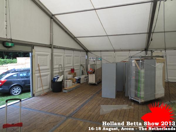 Bettas4all presents the Holland Betta Show 16-18 August 2013 HBS2013-3