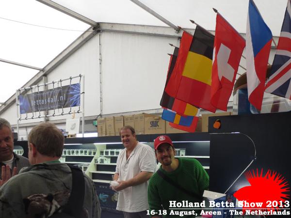 Bettas4all presents the Holland Betta Show 16-18 August 2013 HBS2013-9