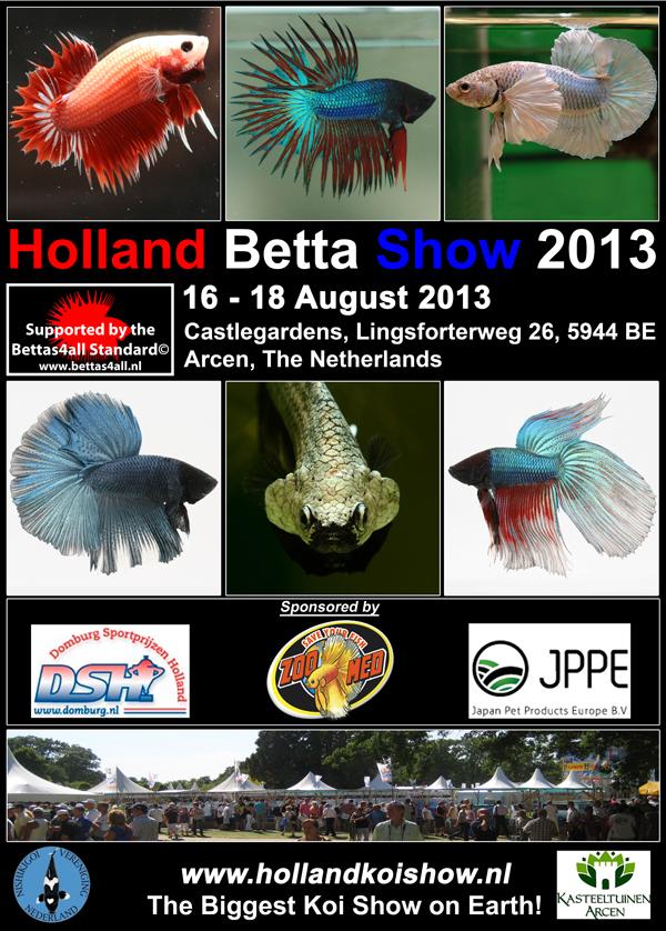 Bettas4all presents the Holland Betta Show 16-18 August 2013 PosterHBS2013smalltemp