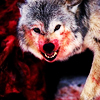 WILD WIDE җ  RPG Wolves_021