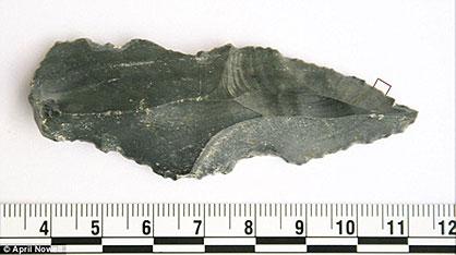 Des restes de sang d'animaux sur des outils préhistoriques Outil-250000-ans-jordanie-residu-sang