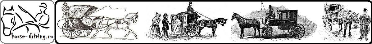 Horse-driving.ru - Конный драйвинг - Упряжная езда