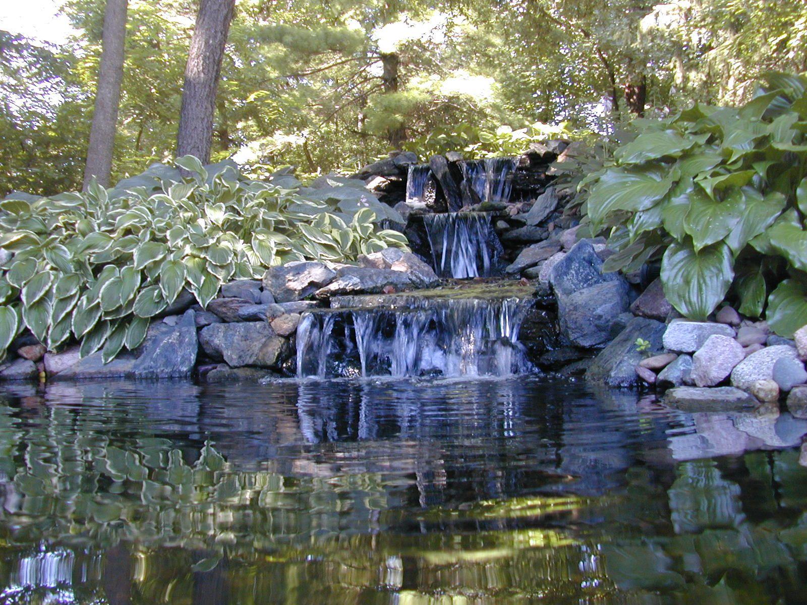 Avalon's gardens 4