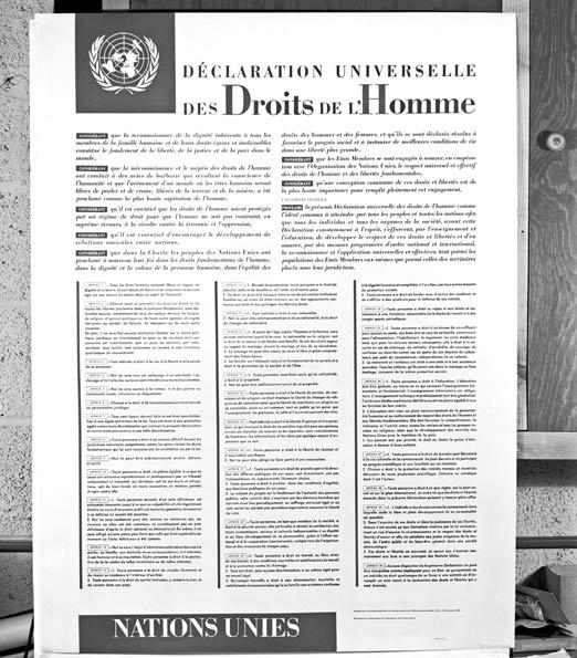 APRE DIVALYE YO ESKE SE DWA DE LOM OU SE POLITIK KOKEN ARISTID, PREVAL ,MATELI   Poster-declaration-droits-homme_un-photo-x