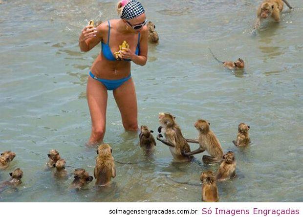 Bienvenidos al nuevo foro de apoyo a Noe #276 / 24.07.15 ~ 30.07.15 - Página 24 Fotos_7116_macacos