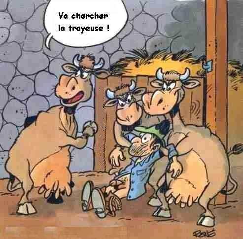DESSINS  HUMORISTIQUES   (pas de photos) - Page 6 Vaches-en-colere