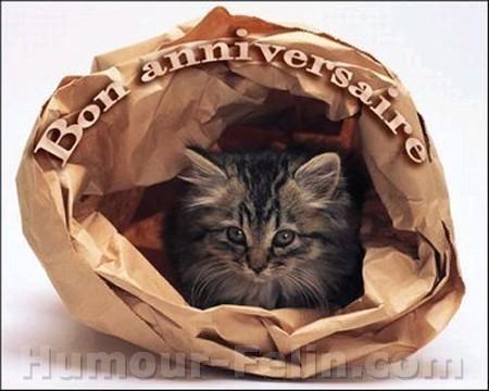 Anniversaires des membres du forum - Page 6 Big_6570-bon-anniversaire