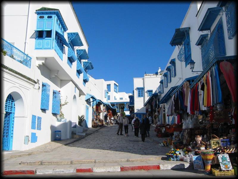 تونس من سيدى بو سعيد للمرسى لتونس العاصمة IMG_3877