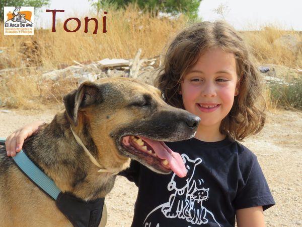 TONI - MARRON (SOLE) TONI_AAAC