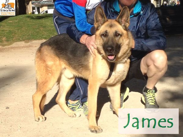 JAMES - XBERGER ALLEMAND (SOLE) JAMES_AA