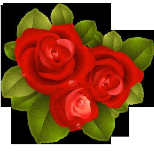 L'Aventurier de son coeur - Caroline Costa 41796