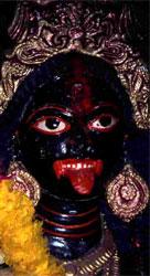 Kali Kali2