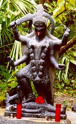 Kali Kali4