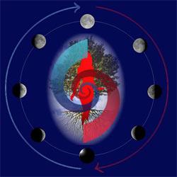 La Luna e i ritmi della Vita Lune09_250