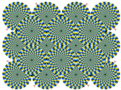 Increíbles ilusiones ópticas Rotsnake