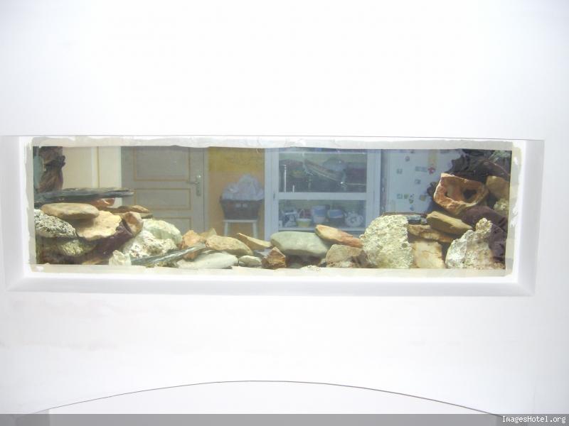 L'aquarium a Jipaige Ic0002