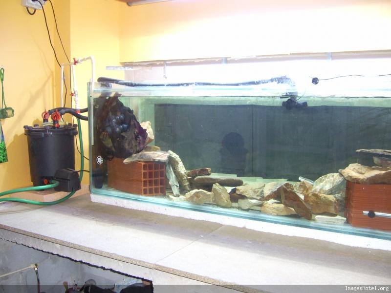 L'aquarium a Jipaige Ic0003