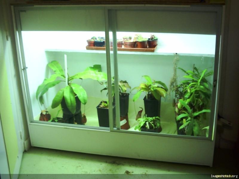 Postez ici vos terrariums serres et tourbieres - Page 2 Newserre