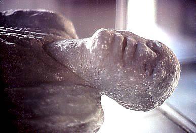 مدينه بوبمي التي عذبها الله (بالصور) Victim_of_Vesuvius_at_Pompeii