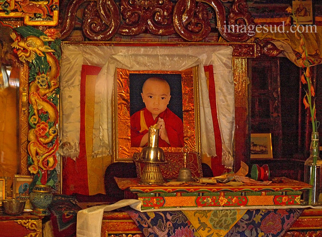 Réincarnation : Théodore Illion - In Secret Tibet : Deux types de spiritualités s'opposent en ce monde Enfant-lama-reincarnation-sankar-P2-6746-ninja
