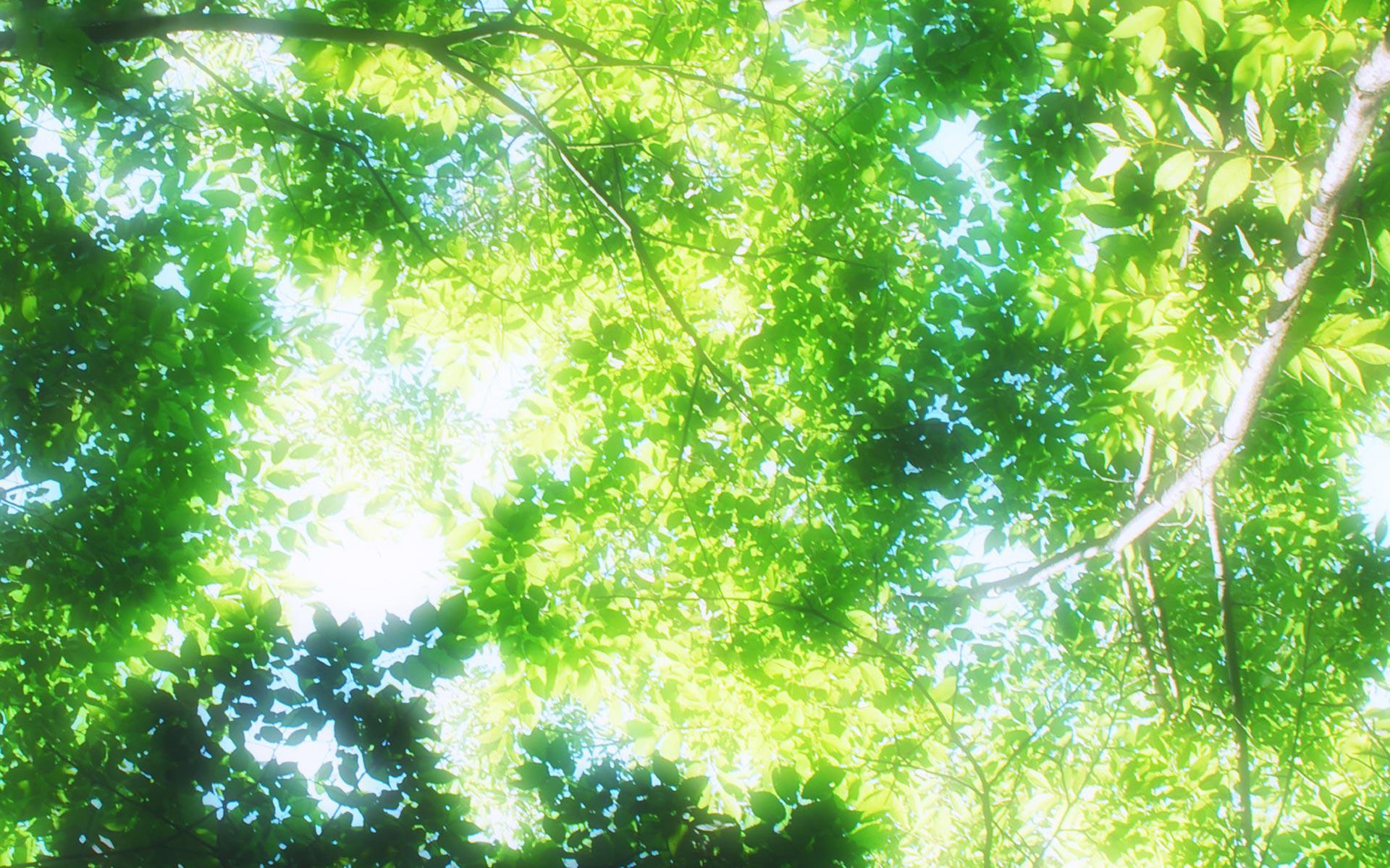 Serenidad [Social Abierto - Albert, etc.] 36426_anime_scenery