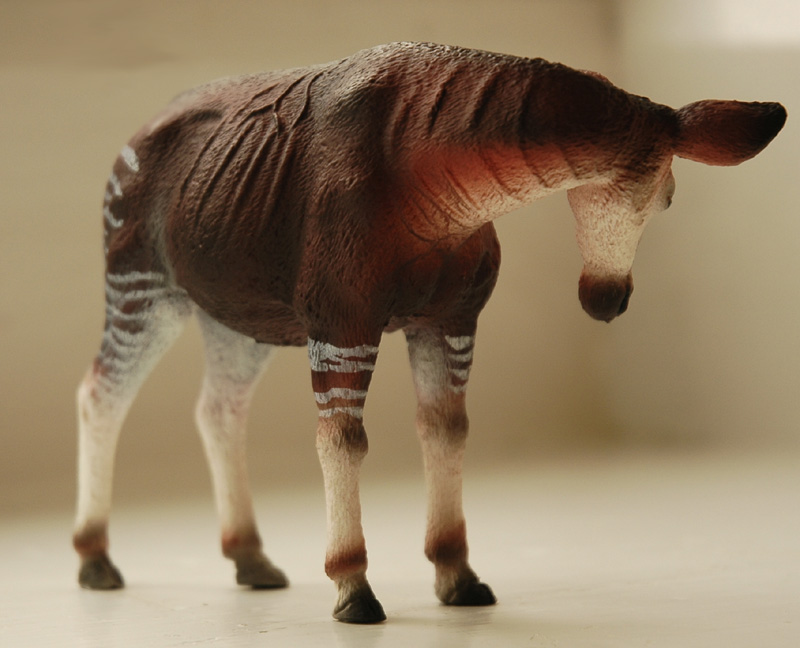 The new Bullyland Okapis - Page 3 Okapi4