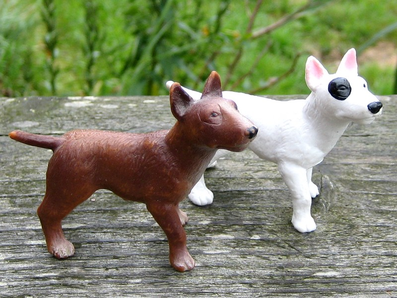 Susanne's Bullyland additions - Page 5 Bullterriers