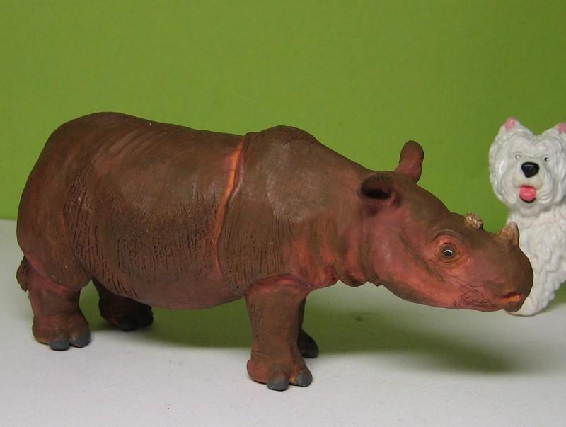 Joan`s wonderful Rhino !!!! Rhinosidesmall