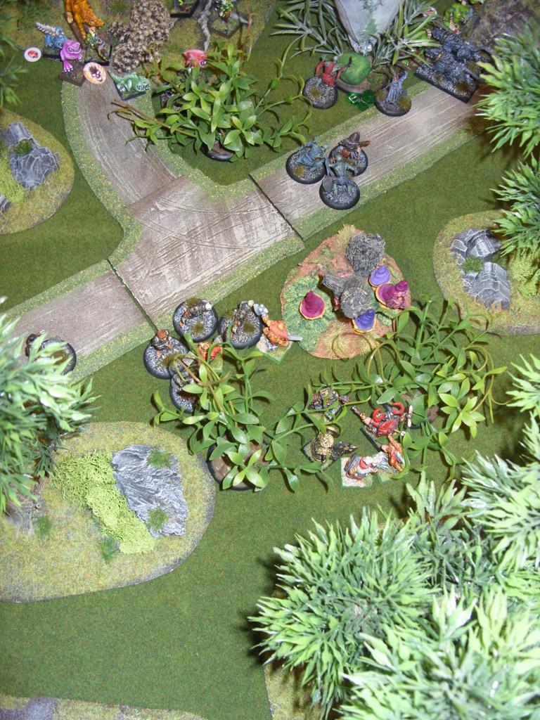 Three way Mordheim battle: A stroll in the park SDC18349