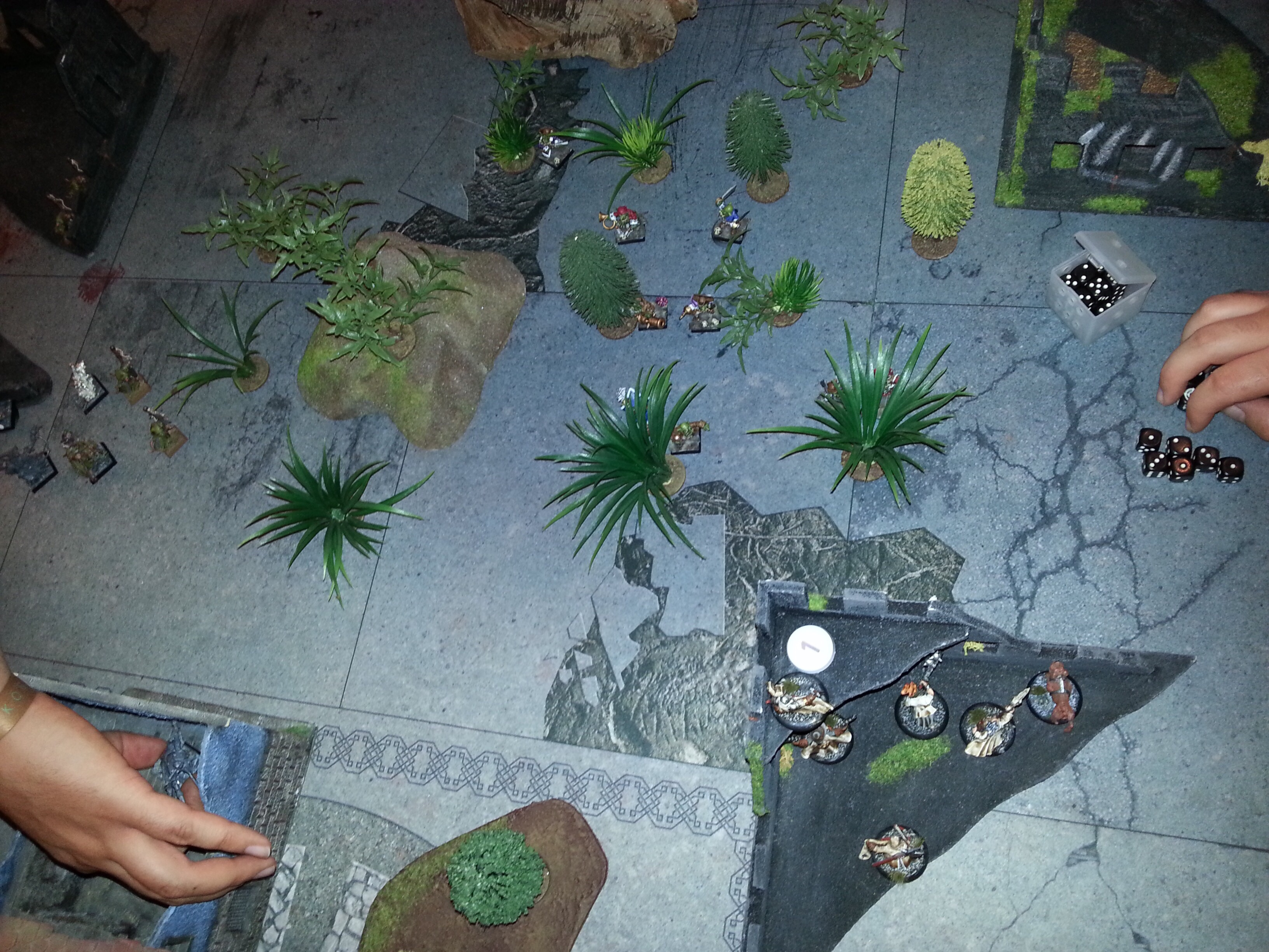 Mordheim during end times campaign Image140