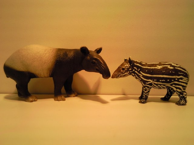 2 New Figurines from Ana for June 2011! Schleich_en_Anas_Maleise_Tapirs_1