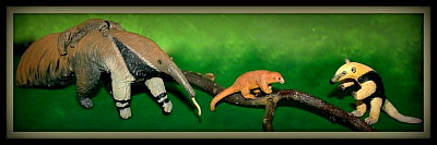 The MOJO additions in my Landscape-Displays IMG_8154_Anteaters_Logo03