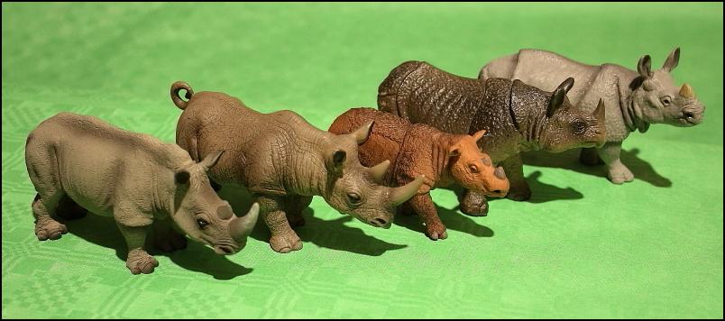 The Javan rhino from Bullyland :-) IMG_5155_Nashornarten01