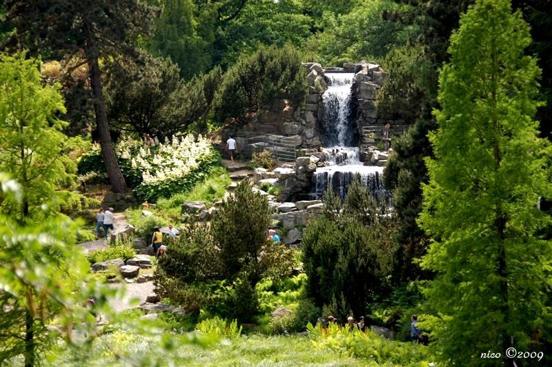 Nicove fotografije Vodopad1