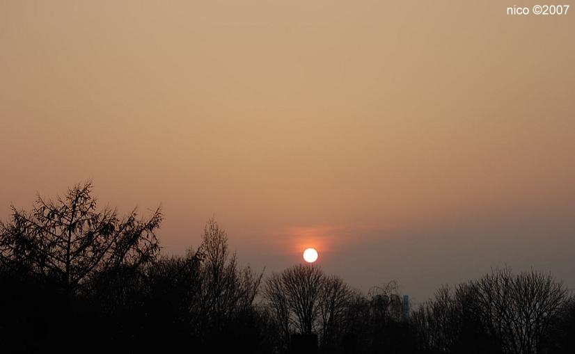 Nicove fotografije - Page 2 Sunset