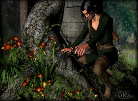 Elf beim Sammeln von Blütenpflanzen