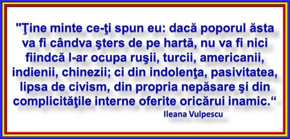 Caii de la bicicleta lui Oprea Ileana-Vulpescu
