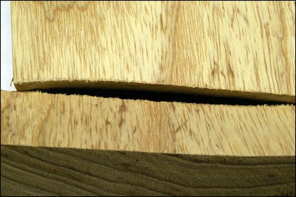 Wood porn Image009