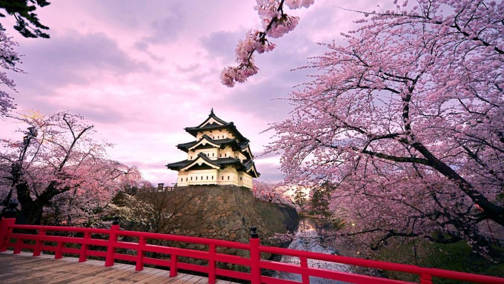 صور من اليابان الرائعة Cherry-Blossom-Kyoto-3-1024x576