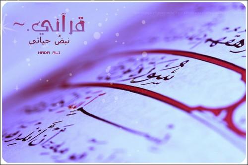 قرآني نبض حياتي A915057d7e04501e898fc649a277d467
