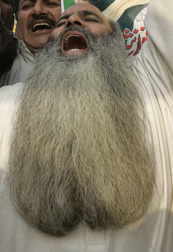 I LiKE tuRtLEs ANd TUrtLeS LIke G MAn! Beard