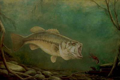 Glosario de Términos de Pesca por Vicente Castrejón Balderas y José Manuel López Pinto Large%20Mouth%20Bass