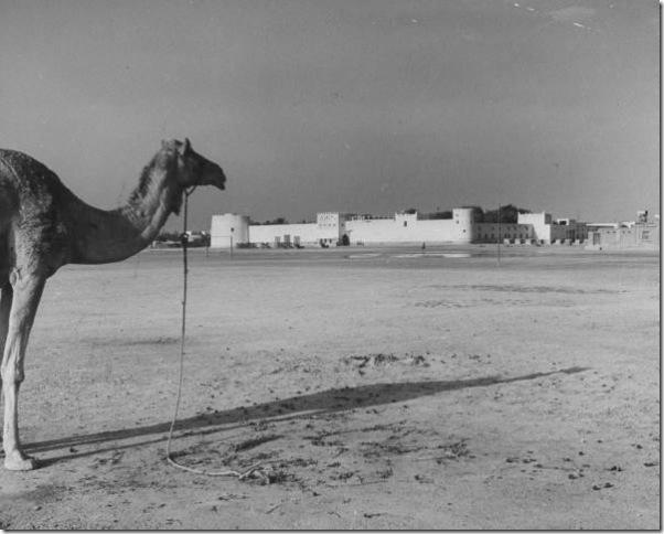 صور نادرة للبحرين مجلة LIFE Thumb19