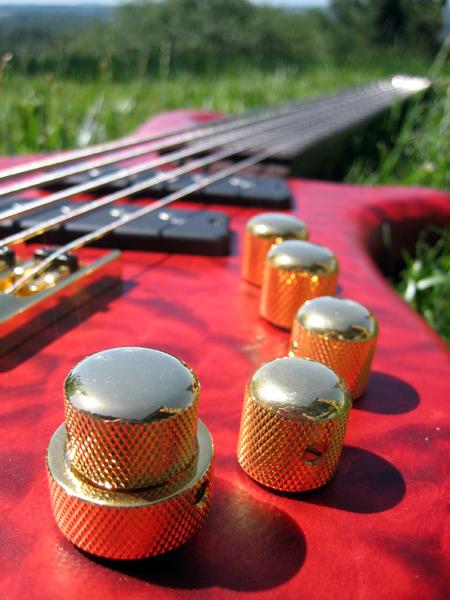 Luthiers amadores pelo mundo Sethhoran42