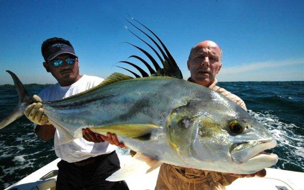 La Pesca del Pez Gallo (Nematistius pectoralis) por José Manuel López Pinto Guatemala_poisson_coq
