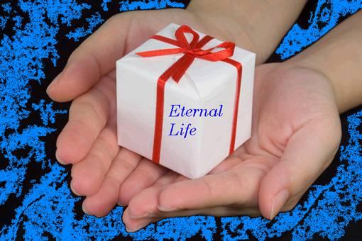 Christmas... Joy To The World Gift_of_eternal_life