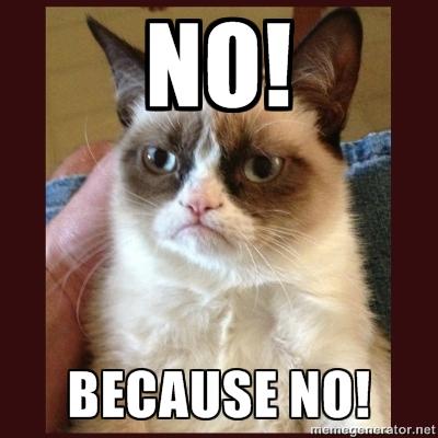 [TROMBI] Ceux qui font vivre ce Forum - Page 4 Grumpy-Cat-NO