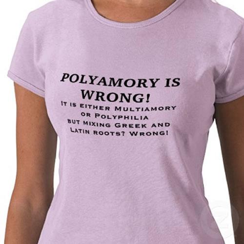 Polyamour Polyamory-is-wrong